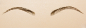 EYEBROWS7